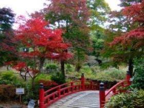 熱海梅園で行われる紅葉まつり