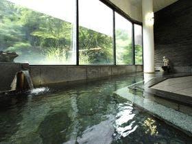 妻と混浴で雪見露天を楽しみたい。