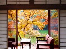 部屋からの紅葉は11月中旬~12月上旬が見頃