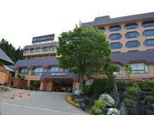 越後湯沢温泉へ家族旅行。15,000円以下で食事付きの温泉宿を教えて下さい。