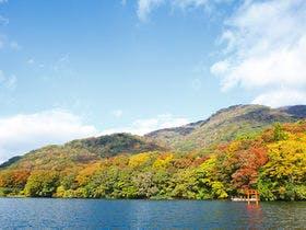 箱根芦ノ湖の紅葉