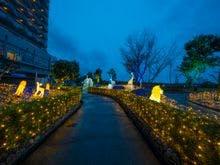 【和歌山県】アドベンチャーワールド周辺で宿泊できる温泉宿を探しています。おすすめを教えて下さい。