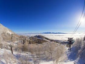 極上のパウダースノーでスキー満喫