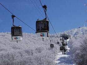 天然雪100%野沢温泉スキー場