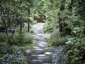 黒川温泉 旅館 奥の湯
