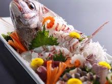 天然鳴門鯛の姿造り
