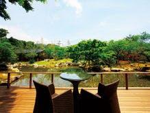 テラスから望む日本庭園