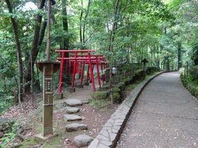 【周辺】小さな鳥居の狸福神社(約5分)