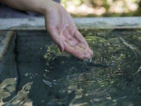【温泉】開湯900年の歴史ある赤湯の湯