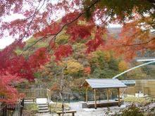 栃木県の川治温泉へ夏に女友達4人で行くので、1泊30,000円以下の料理がおいしい宿をしりたい!