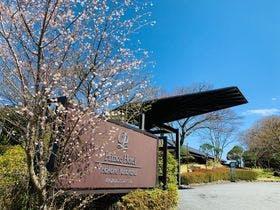 箱根でゴルフパックがある温泉宿