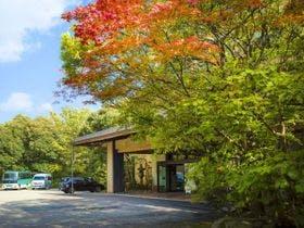 加賀山代温泉で屋外プール付きの宿