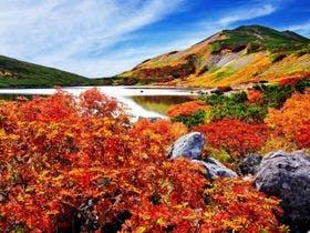白馬の紅葉シーズン