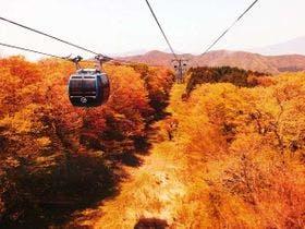 紅葉シーズンの箱根※イメージ
