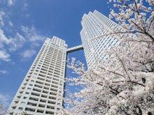 隅田川テラスの桜と銀座クレストン