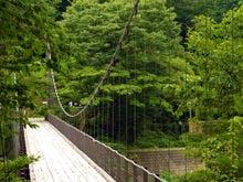 【鷹の巣つり橋】