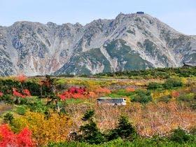 立山の紅葉と高原バス
