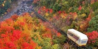 紅葉シーズン時のケーブルカー