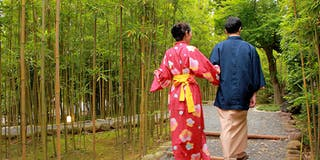 「竹林の小径」は早朝のお散歩がおすすめ