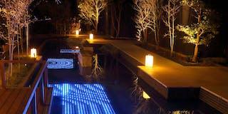 中庭 夜はライトアップされます。