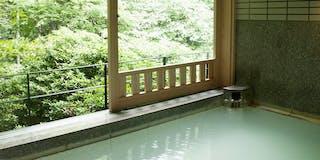 大涌谷かけ流しの温泉です。箱根の森を望みながら、にごり湯でゆったりと・・・