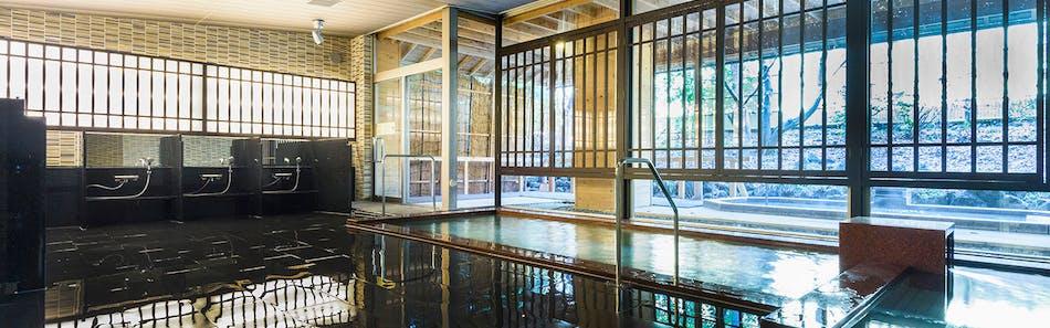 河口湖温泉 富士屋ホテル河口湖アネックス 富士ビューホテル