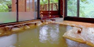 天然炭酸水素塩泉(美肌の湯)