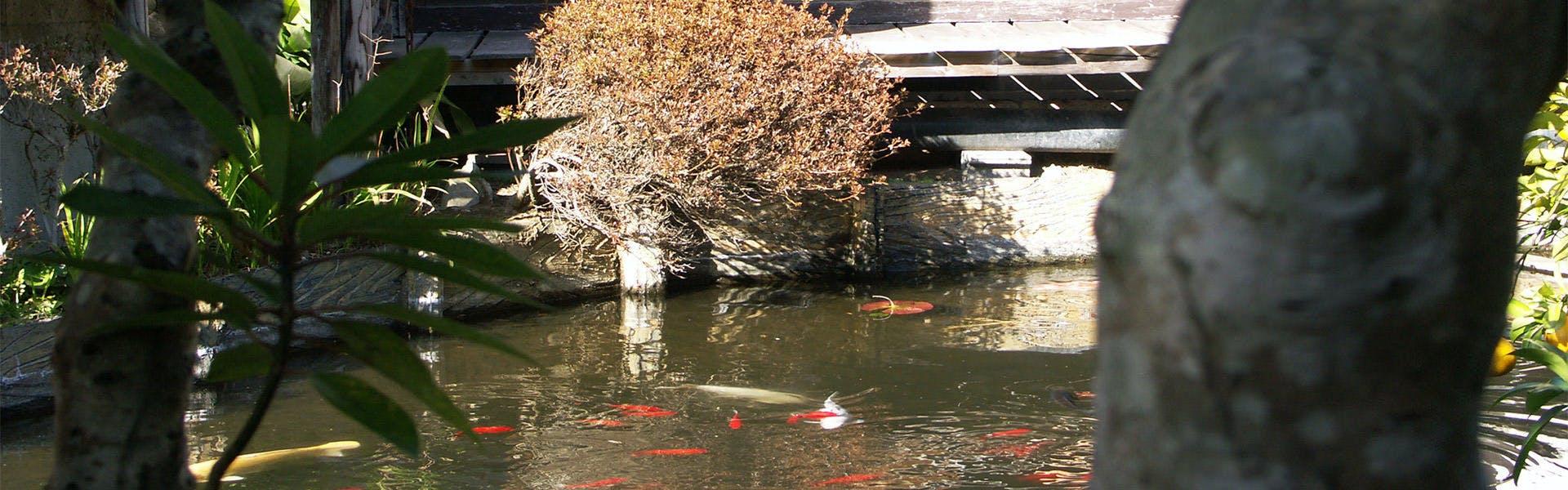 記念日におすすめのホテル・離れ家 石田屋の写真3
