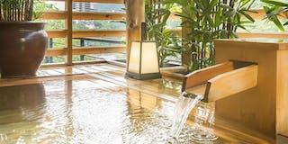 露天風呂からも四季折々の鬼怒川の景色を望むことができます。