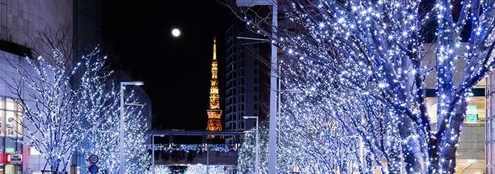 クリスマスイルミネーションやディナーを愉しむ特別プラン グランド ハイアット 東京(東京都/六本木ヒルズ)