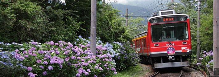 箱根登山電車再開特集 2020年7月23日より運転再開